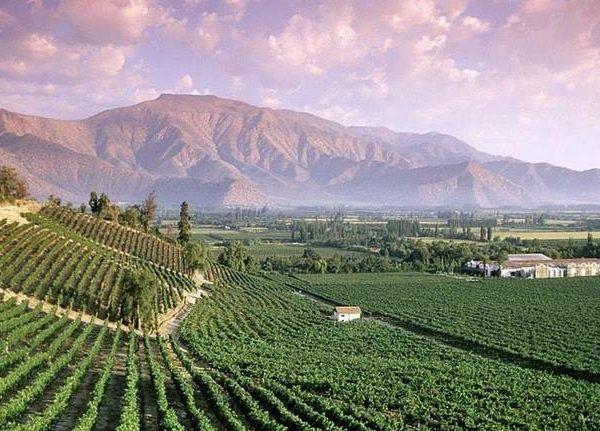 aconcagua valley