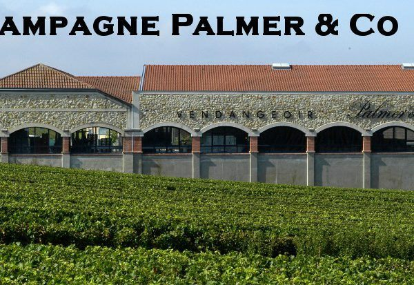 Palmer & co winery