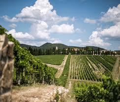 San Felice winery